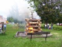vatra2009_8